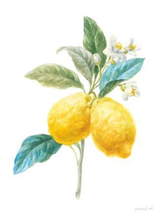 Floursack Lemon IV on White by Danhui Nai
