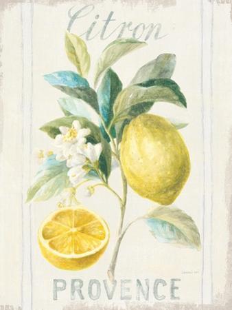 Floursack Lemon IV by Danhui Nai