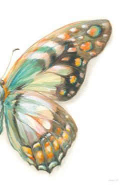 Fragile Wings II by Danhui Nai