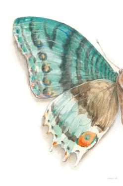 Fragile Wings III by Danhui Nai