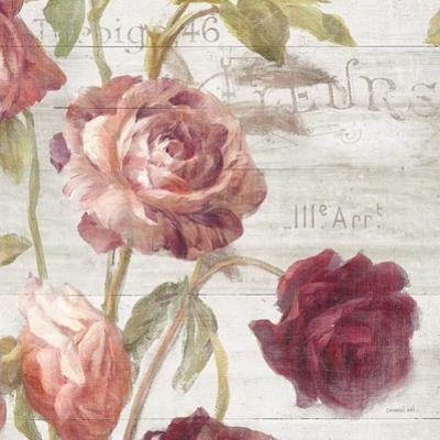 French Roses IV by Danhui Nai