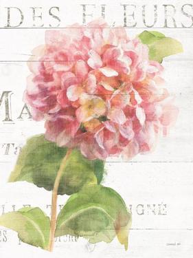 Maison des Fleurs VII by Danhui Nai