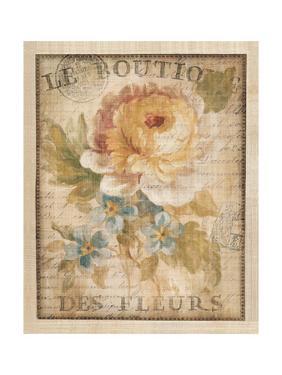 Parisian Flowers I by Danhui Nai