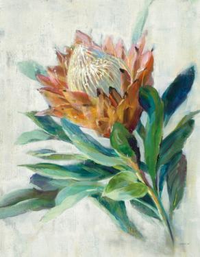 Protea by Danhui Nai