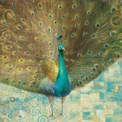 Affordable Peacock Posters for sale at AllPosters com