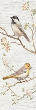 Vintage Birds Panel II by Danhui Nai
