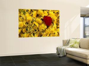 Basket of Marigold Flowers, Coimbatore, Tamil Nadu, India by Daniel Boag