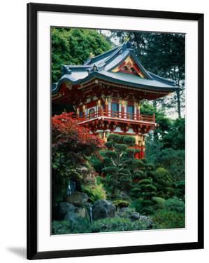 Japanese Tea Garden, San Francisco, CA by Daniel McGarrah