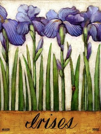 Irises by Daniel Patrick Kessler