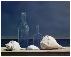 Seaglass and Shells by Daniel Pollera