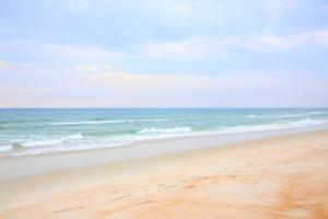 Florida Pastels by Daniela Duncan