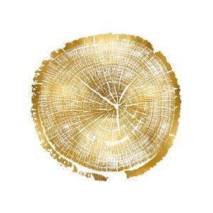Timber Gold I by Danielle Carson