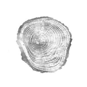 Timber Silver III by Danielle Carson