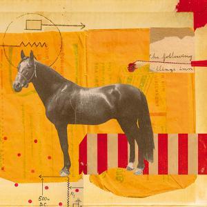 Stripe by Danielle Hession