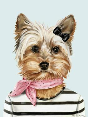 Miss New Yorkie by Danielle Murray