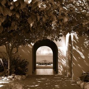 Ocean Villa by Danita Delimont