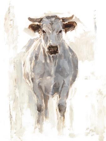 Sunlit Cows I