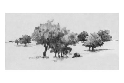 Treeline Sketch II