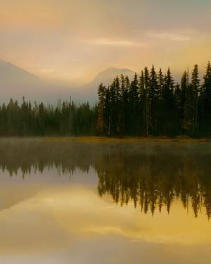 Twilight Reflection II by Danita Delimont