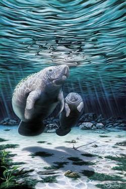 Mermaids of Crystal River by Dann Spider
