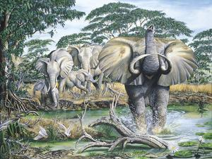 Unrest on the Serengeti by Dann Spider