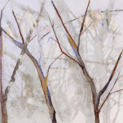 Branches of a Wish Tree A by Danna Harvey