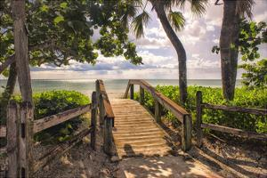 Beach Access by Danny Head