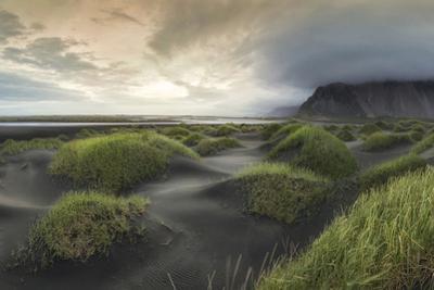 Black Dunes Panorama by Danny Head