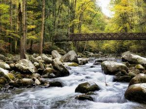 Bridging the Seasons by Danny Head