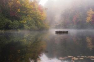 Mist on the Lake by Danny Head