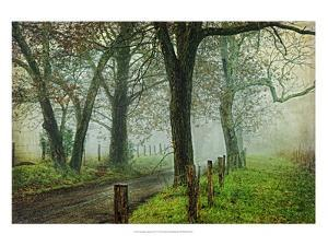 Morning on Sparks Lane IV by Danny Head