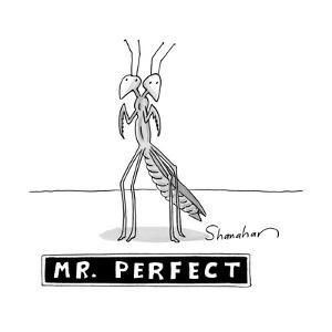 "A two headed mantis is standing and under him there is a box reading ""Mr. ? - New Yorker Cartoon by Danny Shanahan"