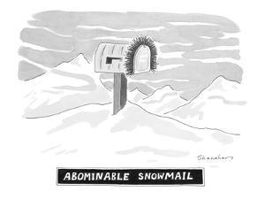 Abominable Snowmail - New Yorker Cartoon by Danny Shanahan
