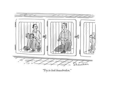 """""""Try to look housebroken."""" - New Yorker Cartoon by Danny Shanahan"""