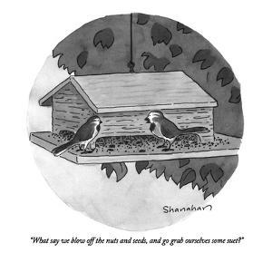 """""""What say we blow off the nuts and seeds, and go grab ourselves some suet?..."""" - New Yorker Cartoon by Danny Shanahan"""