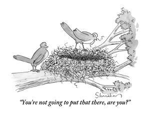 """You're not going to put that there, are you?"" - New Yorker Cartoon by Danny Shanahan"