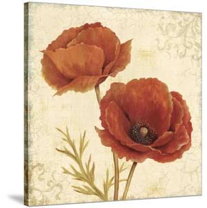 Poppy Bouquet I by Daphné B