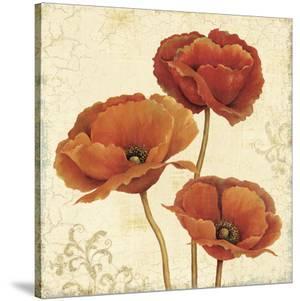 Poppy Bouquet II by Daphné B