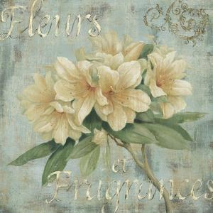 Vintage Fragrance I by Daphné B.