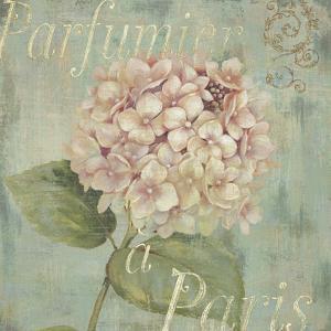 Vintage Fragrance IV by Daphné B.