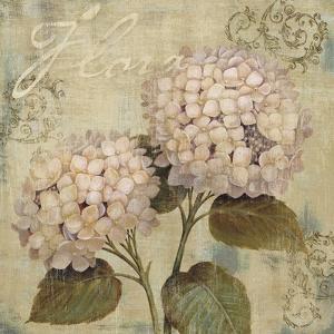 Vintage Petals II by Daphné B.