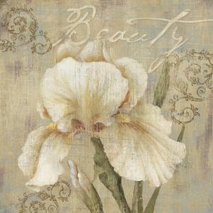 Vintage Petals III by Daphné B.