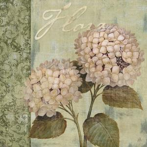Vintage Petals Vi by Daphné B.