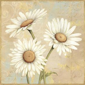 Beautiful Daisies I by Daphne Brissonnet