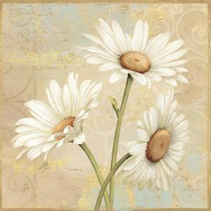 Beautiful Daisies II by Daphne Brissonnet