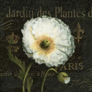 Botanical Garden I Borderless by Daphne Brissonnet