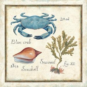 Oceanography IV by Daphne Brissonnet