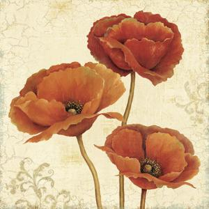 Poppy Bouquet II by Daphne Brissonnet