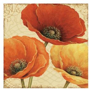 Poppy Spice I by Daphne Brissonnet
