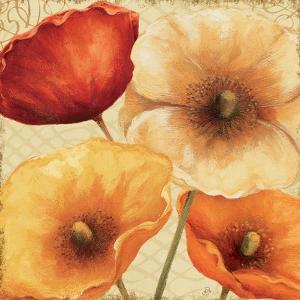 Poppy Spice III by Daphne Brissonnet